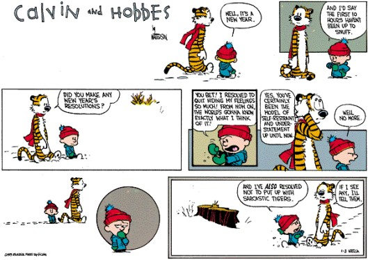 calvin-hobbes-resolutions-7